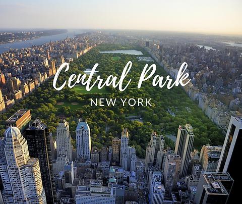 Field Trip Central Park