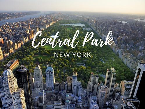 Central Park Local Scavenger Hunts