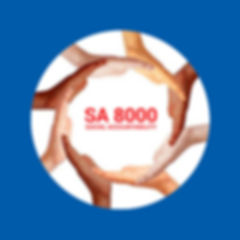 sa-8000-social-accountability-audit-serv