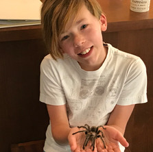 holding a very alive whistling tarantula