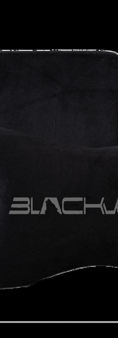 blackwolf pillow.png