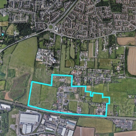 Basildon Borough Council advice