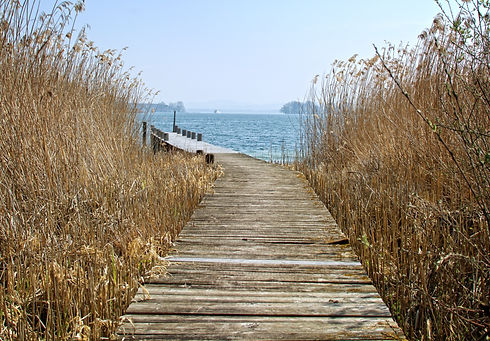 bank-beach-boardwalk-dock-276375.jpg