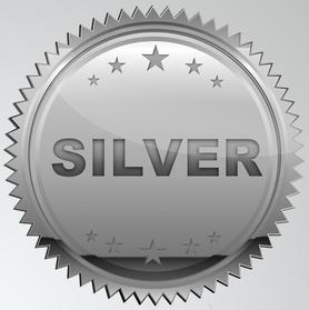 Silver Exterior