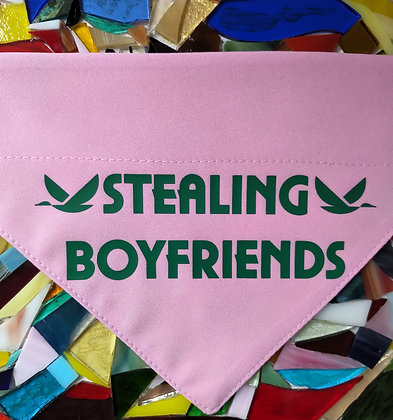 Stealing boyfriends