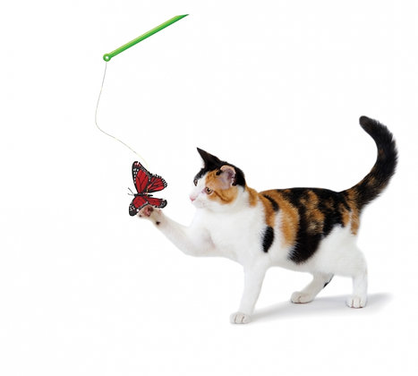 Butterfly Chase Wand