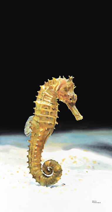 """Lined Sea Horse"""