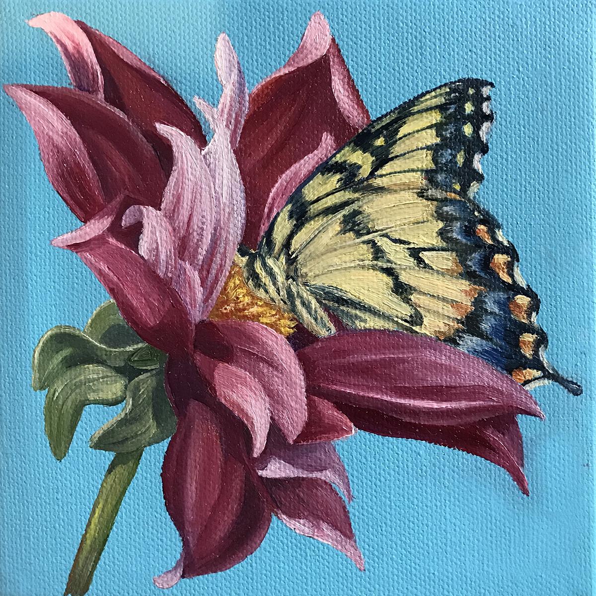 Swallowtail Dahlia