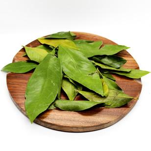 Citrus Leaf Soda