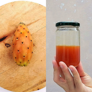 Prickly Pear Shrub (Skin, Seeds, and Fruit)