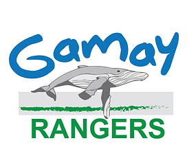 Gamay Rangers.png