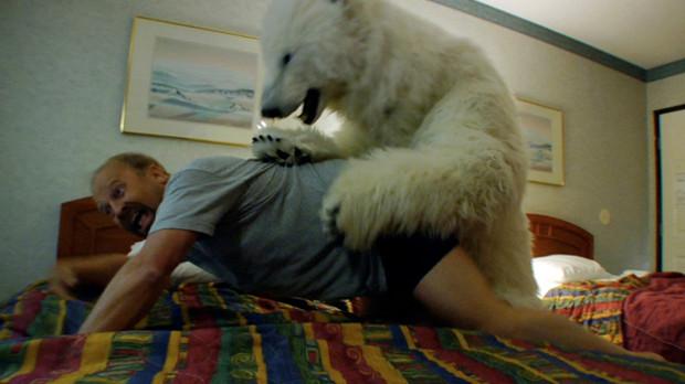 American Weenus Mauled by Polar Bear: Canada's Fault