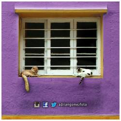 Facebook - ©Adrián Gómez  Serie: Chile  #AdrianGomezFoto #Chile #Valparaiso — en