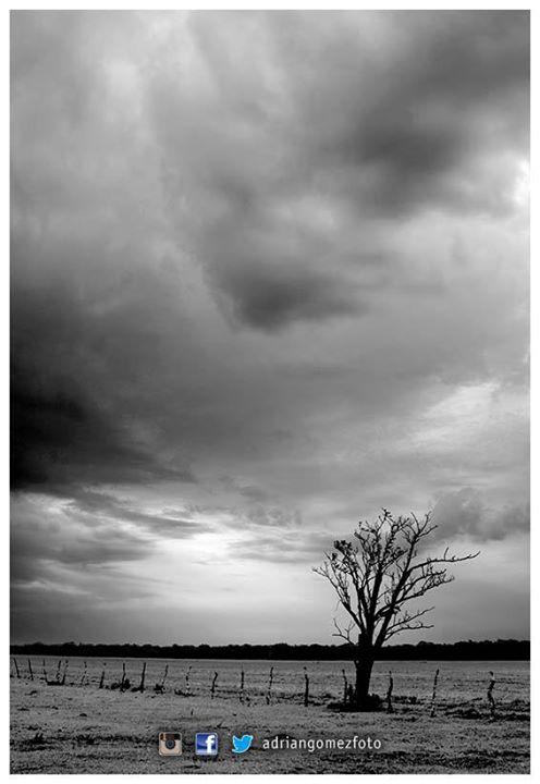 Nogoyá #AdrianGomezFoto #Campo #Nogoya