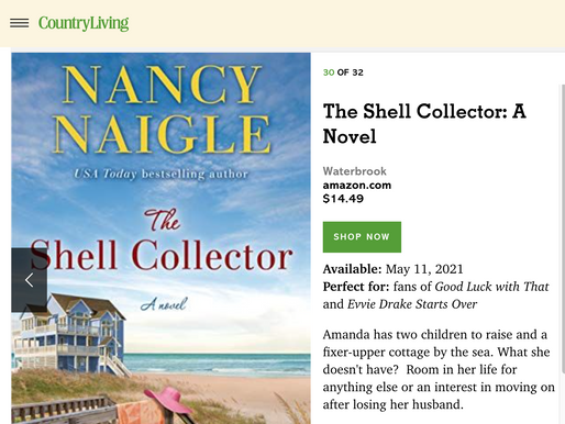 32 Best Beach Reads of 2021 from Country Living Magazine