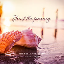The Shell Collector Quote - Trust the Journey
