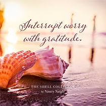 The Shell Collector Quote Interrupt Worry With Gratitude