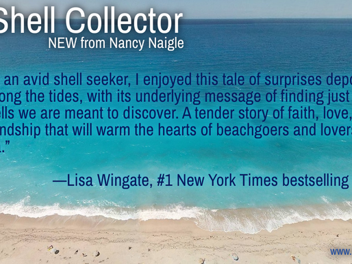 Have you heard about THE SHELL COLLECTOR?