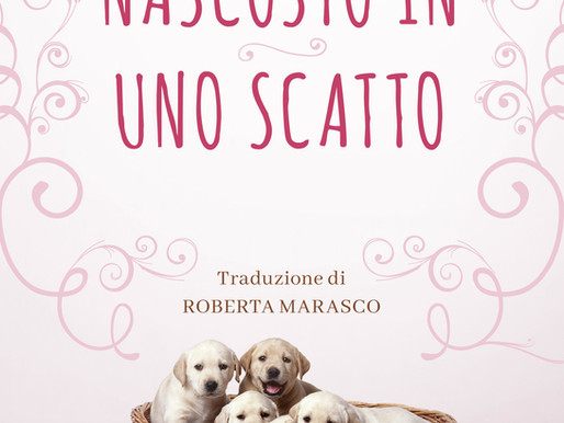 Italian-translation Out of Focus just released