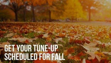 Fall Tune-up