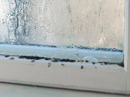 Ways to Lower Your Home Humidity