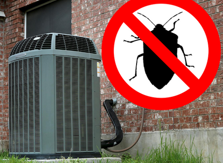 How to Keep Bugs Away from Your AC Unit