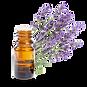 IMGBIN_english-lavender-lavender-oil-ess