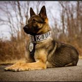 Ohio K9 Police Memorial.jpg