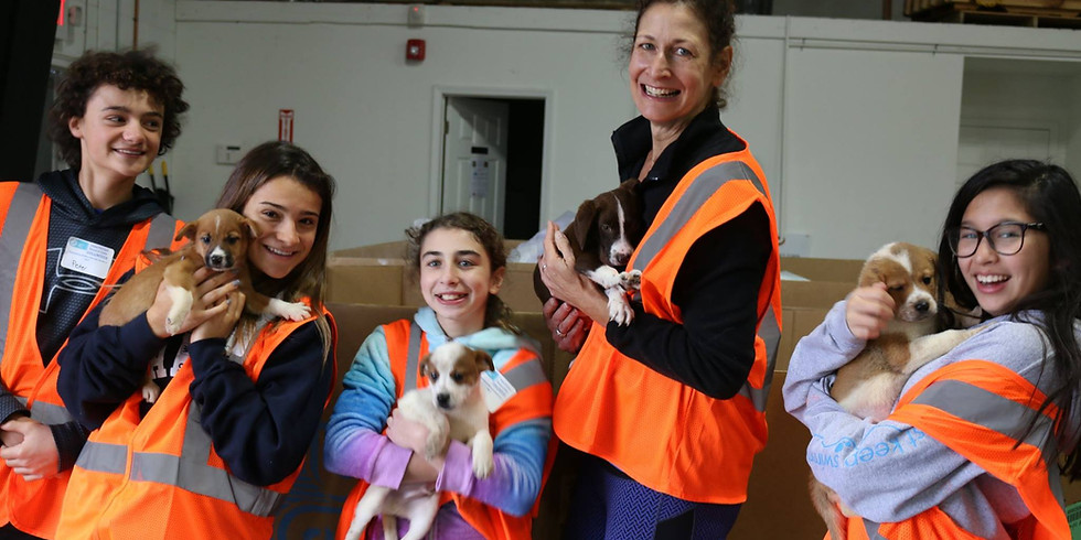 October 11th DOG Distribution Day