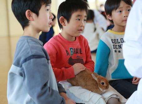 動物ふれあい教室