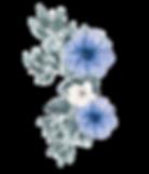 Flowers_bbrides.png