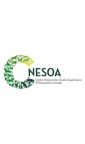 C-Nesoa