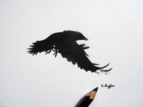 drawing with pencil next to it of a crow in flight motion blur on feathers