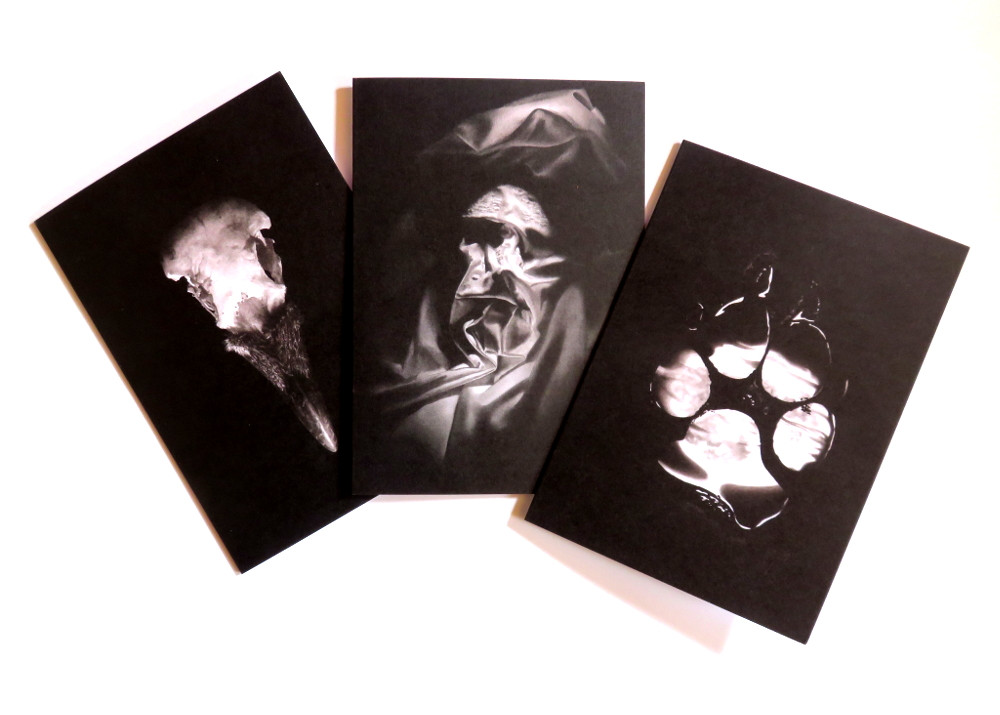 Crow skull, pawprint and a human face created by a rumpled sheet drawings on greeting cards
