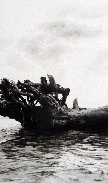 Driftwood galleon charcoal drawing
