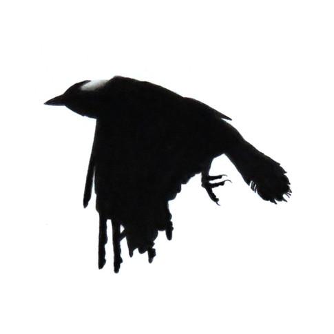 Murder Crow 7