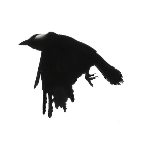 Murder Crow 11