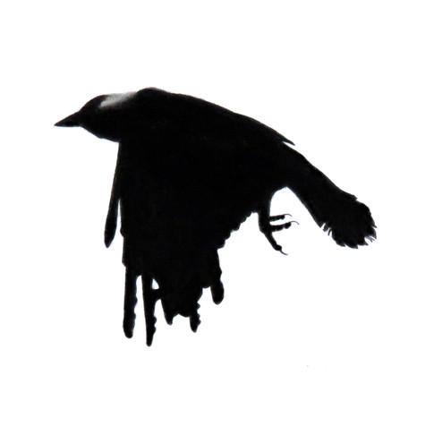 Murder Crow 30