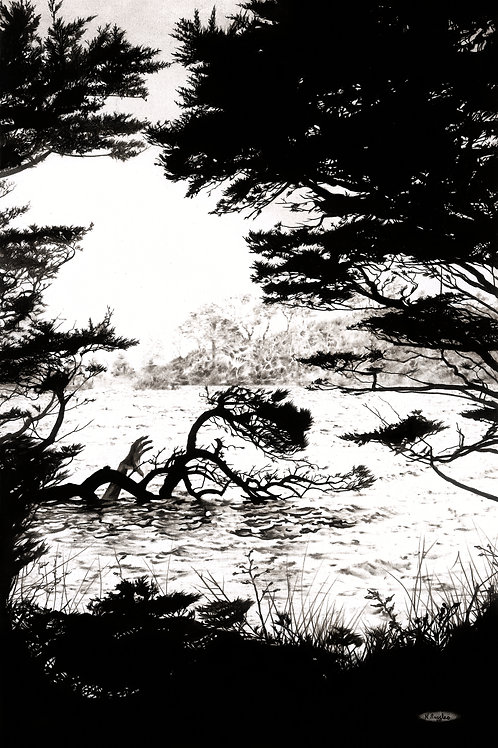 monochrome drawing of Loe Pool in Cornwall with a freshwater mermaid hiding in the water