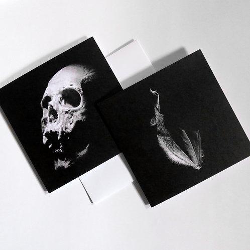 Skull and bat card set