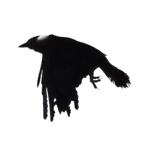 Murder Crow 14