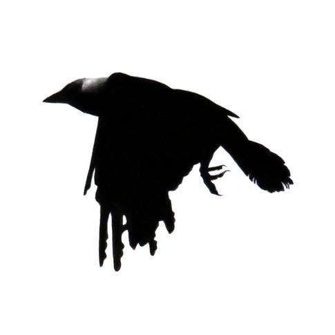 Murder Crow 4