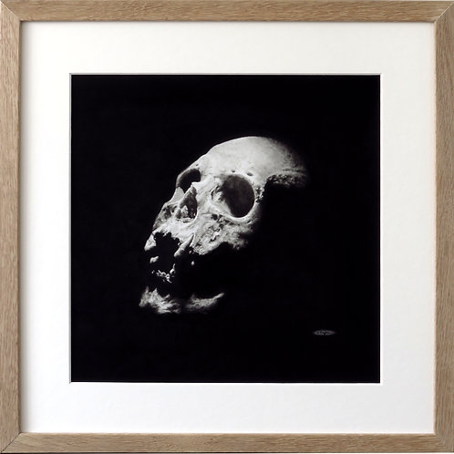 Hand drawn human skull in charcoal pencil framed in oak by drawing in dark