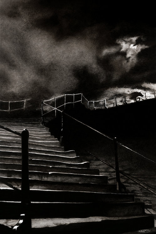 Black dog of Whitby running up the abbey steps on the front cover of Tales in Somber Tones