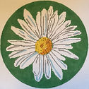 Shasta daisy needlepoint designs