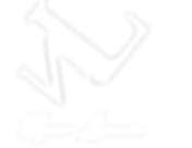 Logo_Wit_Nyssa.png
