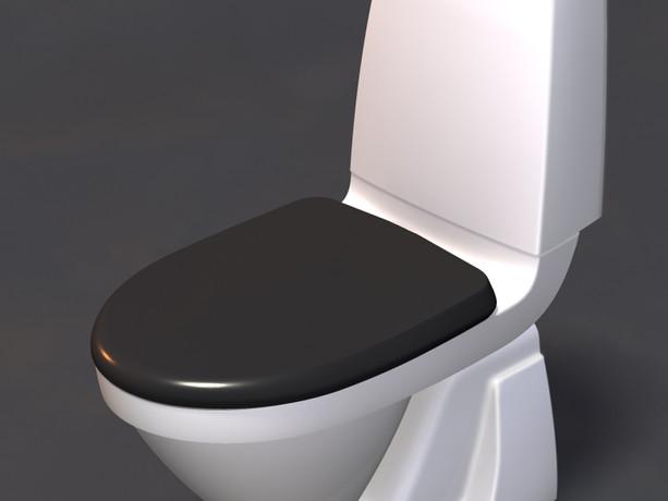 Svedberg WC
