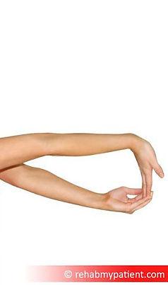 forearm flexor stretch.jpg