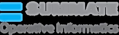 logo gray with Gray operative informatic