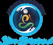 Minus stevebrissiaud_logo - plus petit.p